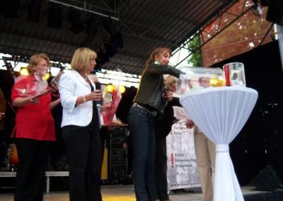 2009 Stadtfest (43)