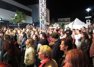 2012 Stadtfest (43)