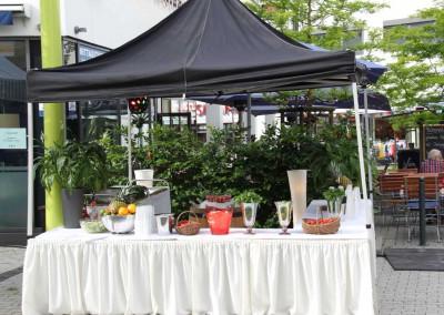 2013 Stadtfest Lohmar (1)