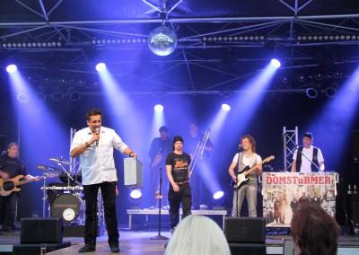 2014-06 Stadtfest (30)