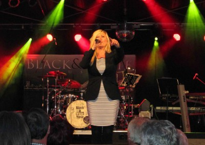 2015-stadtfest (41)